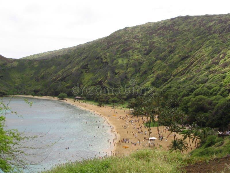 夏威夷 库存图片