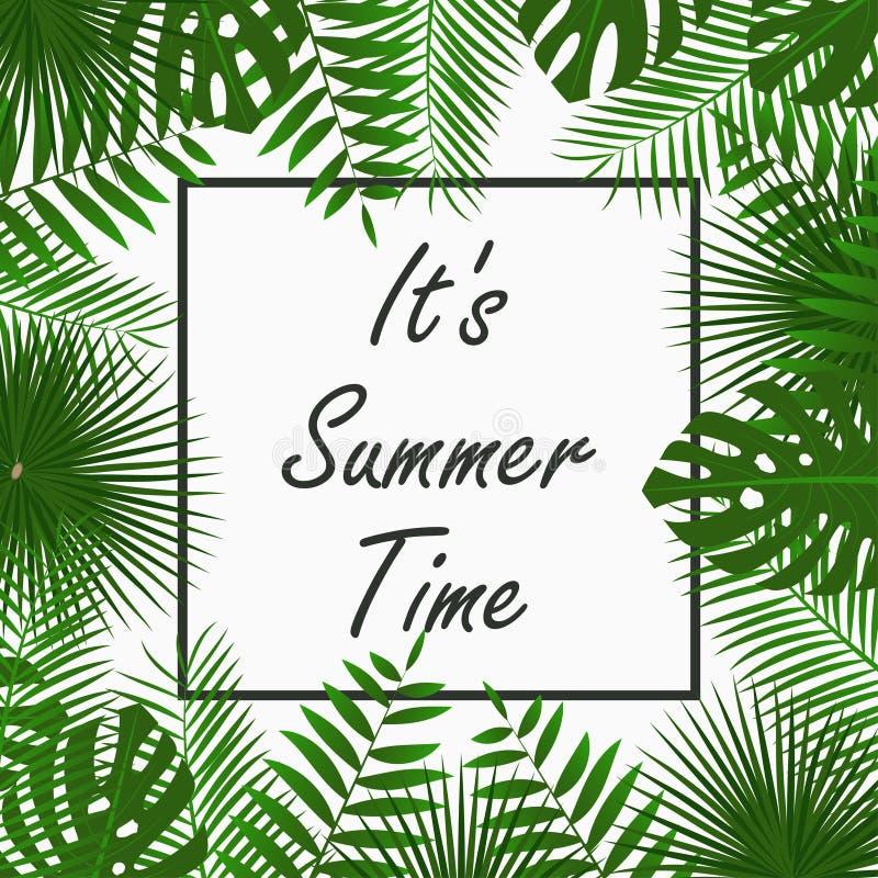 夏时与-热带棕榈叶、密林叶子、异乎寻常的植物和边界框架的卡片设计 海报的,横幅图表 向量例证