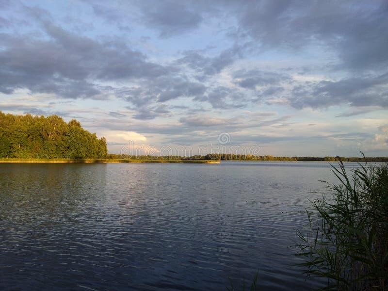 夏时在Avilys湖  免版税库存照片
