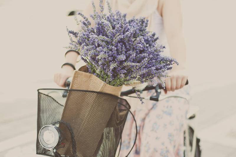 夏令时骑自行车 免版税图库摄影