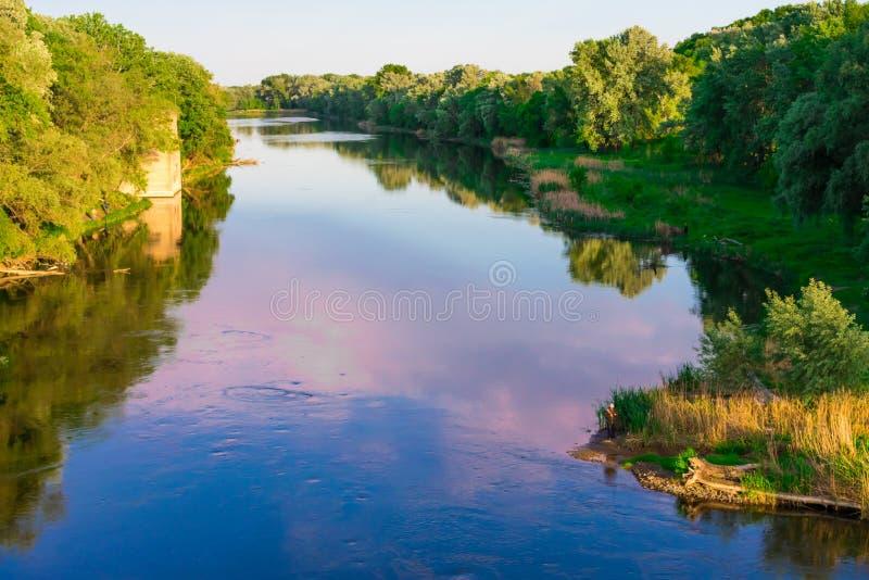 夕阳照下的森林里的河 库存照片
