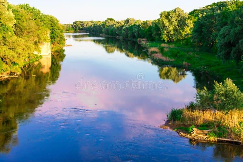 夕阳照下的森林里的河 免版税库存图片