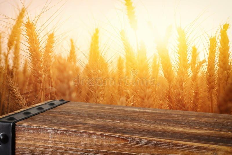 夕阳照下麦田前木板桌 已准备好用于产品显示器蒙太奇 免版税图库摄影
