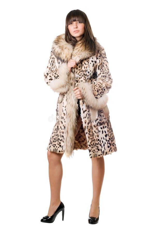 外套夫人豹子性感的年轻人 免版税库存照片