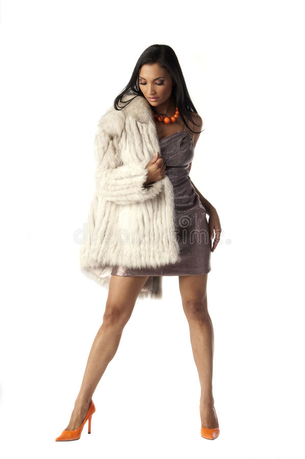 外套毛皮妇女 库存图片