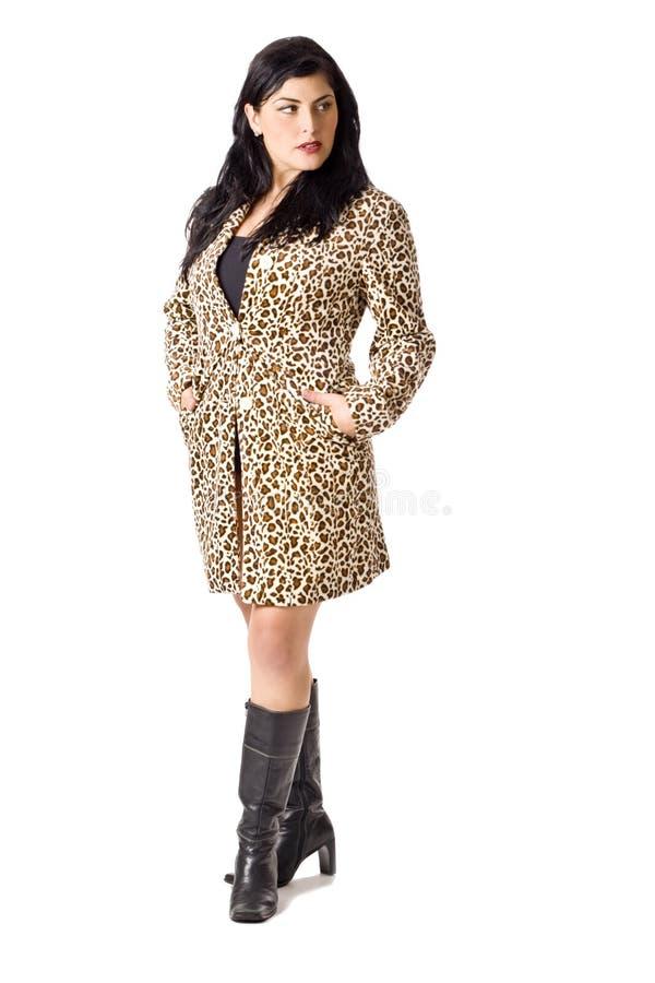 外套leapard打印 库存图片