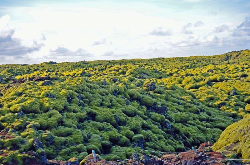 外籍人风景,在世界外面在冰岛喜欢形成 免版税库存照片