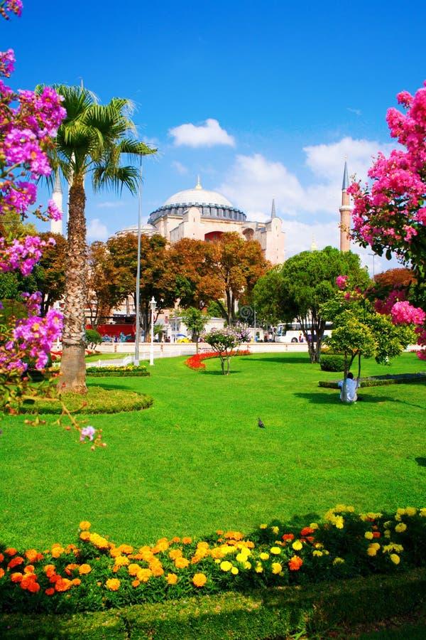 外部hagia伊斯坦布尔清真寺sophia视图 图库摄影