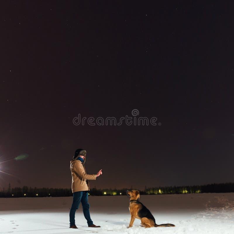 外面逗人喜爱的混杂的品种狗 在坐在领域的雪的杂种动物看起来哀伤 图库摄影