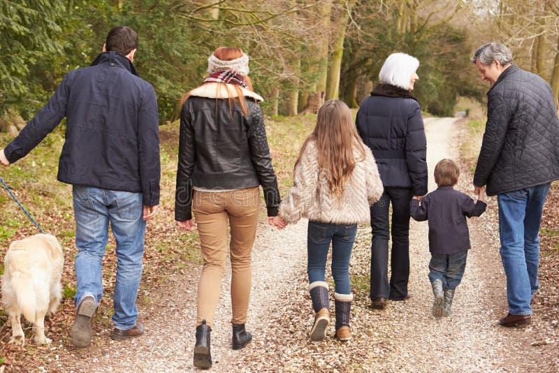 多一代家庭背面图在乡下步行的 免版税库存图片