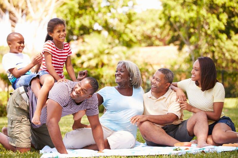多一代家庭获得乐趣在庭院一起 库存照片