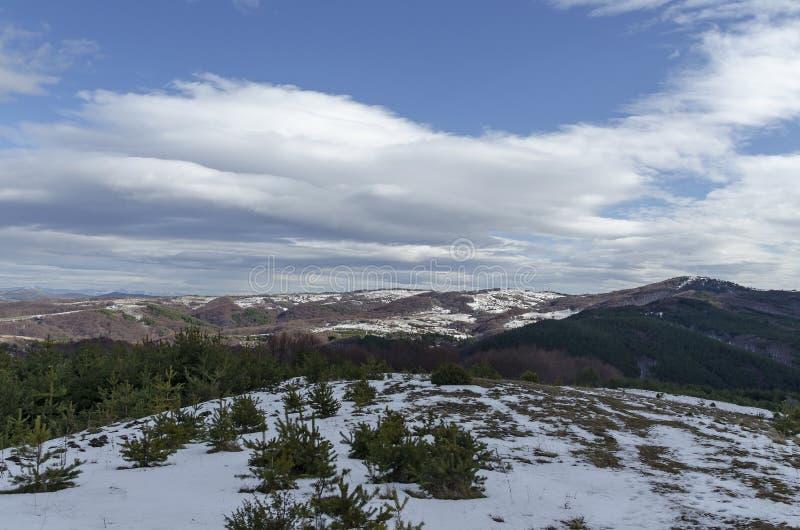 多云天空、冬天山、多雪的沼地、住宅区、针叶树和落叶林庄严看法从Plana山 库存照片