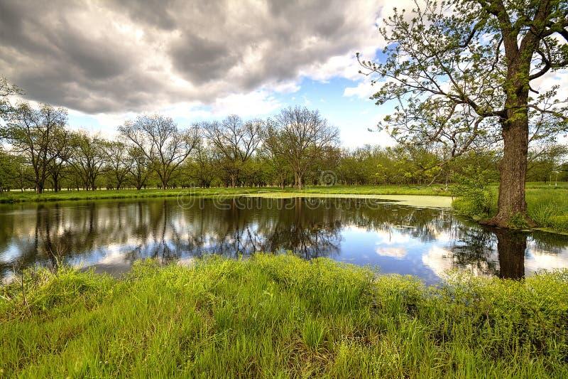 多云天空池塘 库存图片