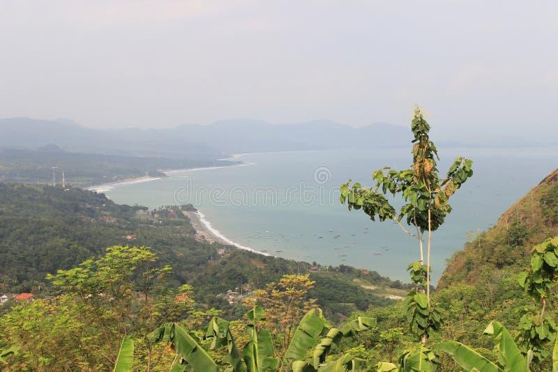 多云海岸和绿色树 库存图片