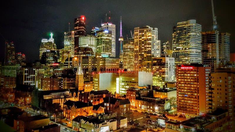 多伦多在晚上 库存图片