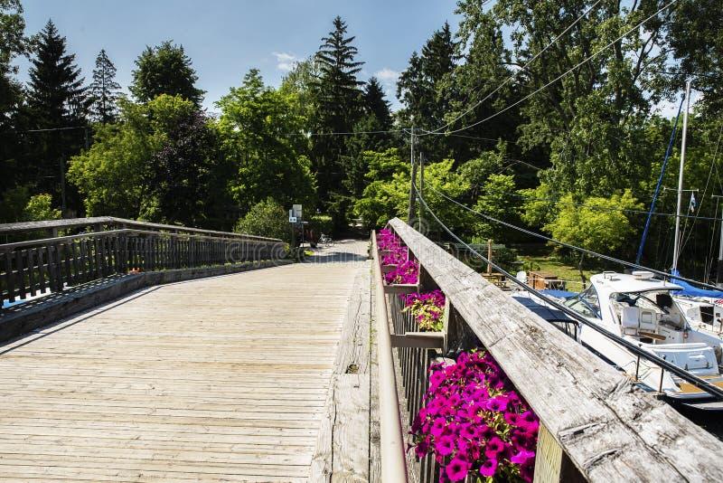 多伦多有天空蔚蓝、绿色树和云彩的海岛小游艇船坞 免版税图库摄影