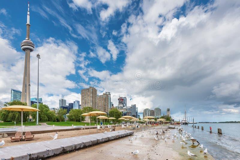 多伦多海滩夏日-多伦多,安大略,加拿大 库存照片