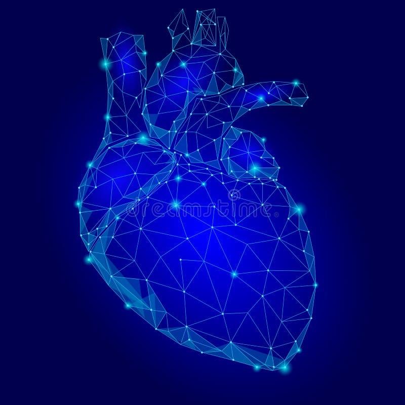 多低人的心脏内脏的三角 被连接的小点蓝色颜色技术3d模型医学健康身体局部illu 皇族释放例证