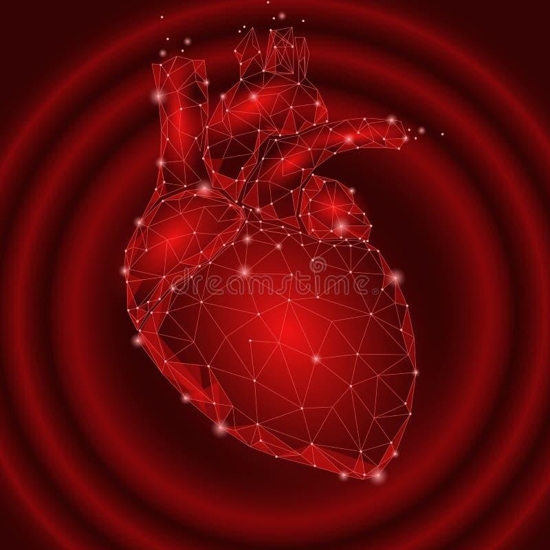 多低人的心跳内脏的三角 被连接的小点红颜色冲动技术3d模型医学健康身体同水准 库存例证