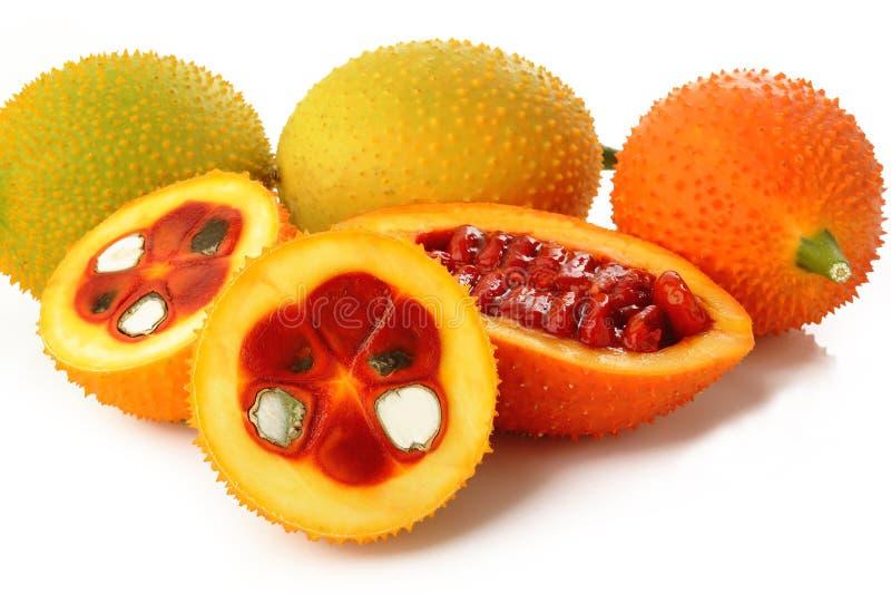 多刺的苦涩金瓜、甜金瓜或者Cochinchin金瓜在白色 图库摄影