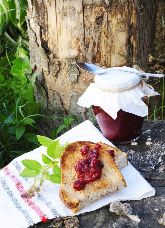 多士和山莓果酱 库存照片