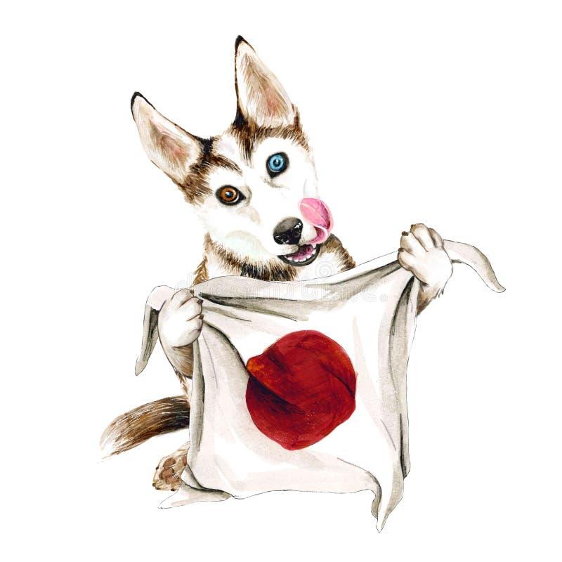 多壳的狗助长拿着日本旗子 在白色背景隔绝的小狗 东京 皇族释放例证