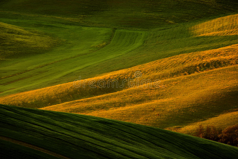 多小山农田田园诗看法在美好的早晨光的,意大利托斯卡纳 风景在意大利 在领域的早晨光 免版税库存照片