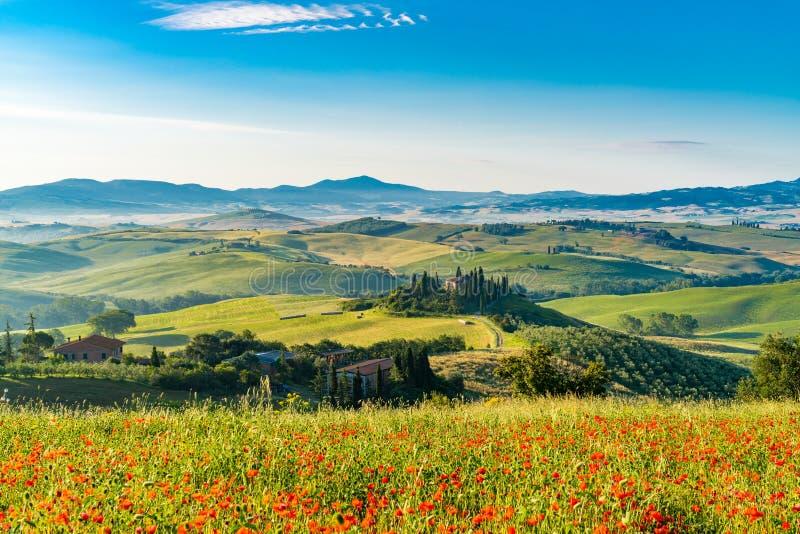 多小山托斯卡纳的美好的风景在夏天晴朗的早晨 免版税图库摄影