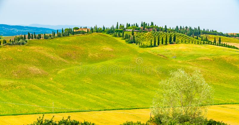 多小山风景全景在托斯卡纳 免版税库存照片