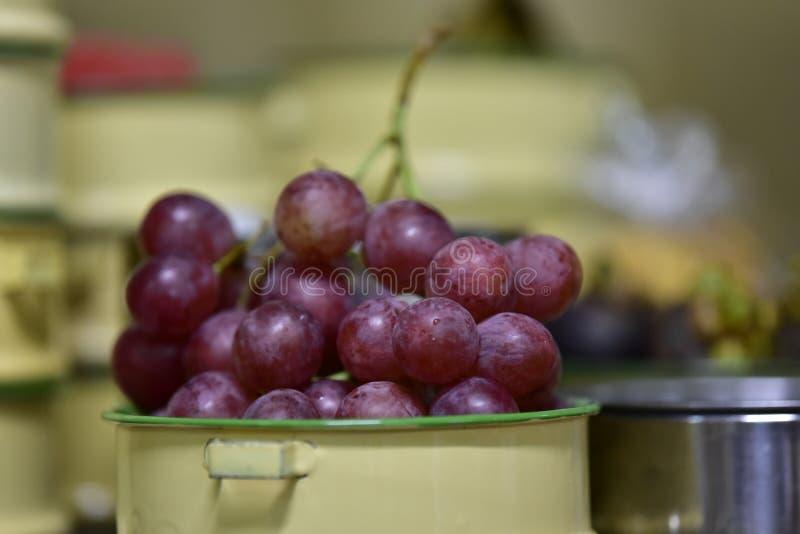 多层tiffin,投入了一个大紫色葡萄 库存照片