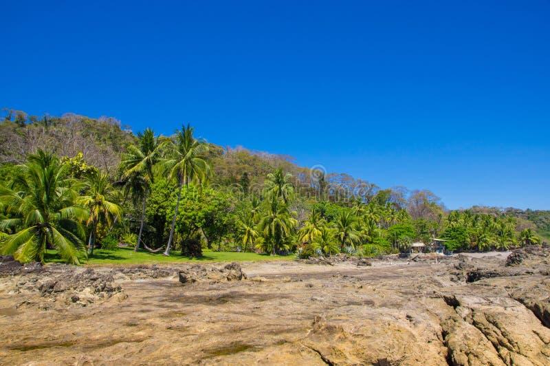 多岩石的海滩和树美好的风景在Playa Montezuma在华美的蓝天和晴天 图库摄影