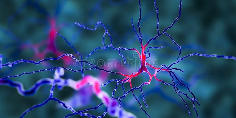 多巴胺能的神经元 这脑细胞的退化对帕金森` s疾病的发展负责 库存例证