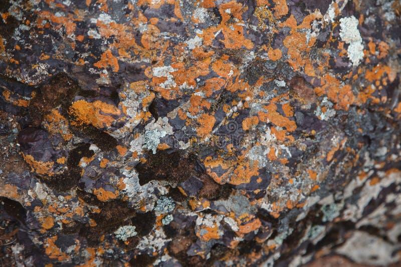 多彩多姿的冰砾飞机  美好的岩石表面关闭 五颜六色的织地不很细石头 高地令人惊讶的详细的背景  免版税图库摄影