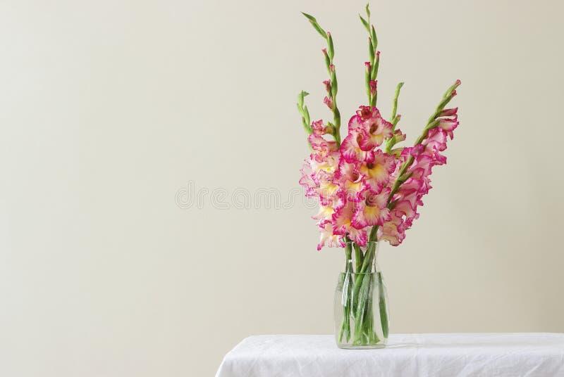 多彩多姿的剑兰花束在一个玻璃花瓶的在轻的背景 2007个看板卡招呼的新年好 免版税库存图片