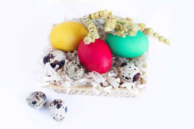 多彩多姿的复活节彩蛋在白色背景的一个篮子在 在篮子的黄色,红色,绿色和鹌鹑蛋 免版税库存照片