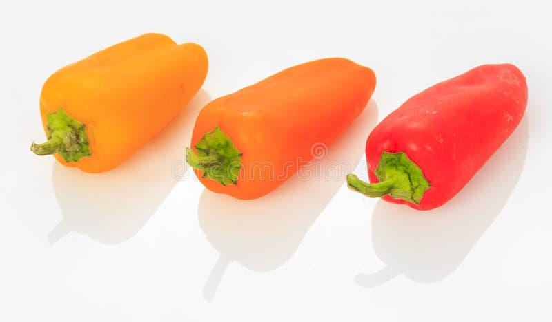 多彩多姿的微型甜椒胡椒 免版税库存照片