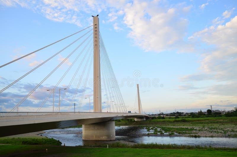 多摩市河桥梁 免版税图库摄影
