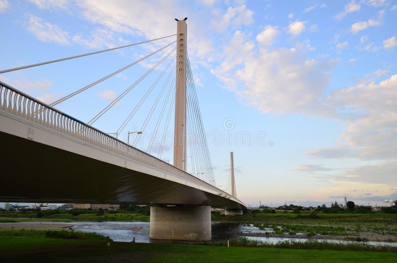 多摩市河桥梁 免版税库存照片