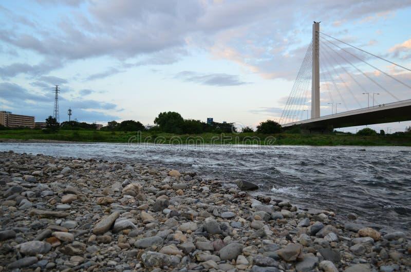 多摩市河 免版税库存图片