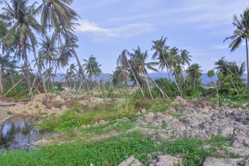多数严重损伤地震液化Petobo苏拉威西岛中部 免版税库存照片