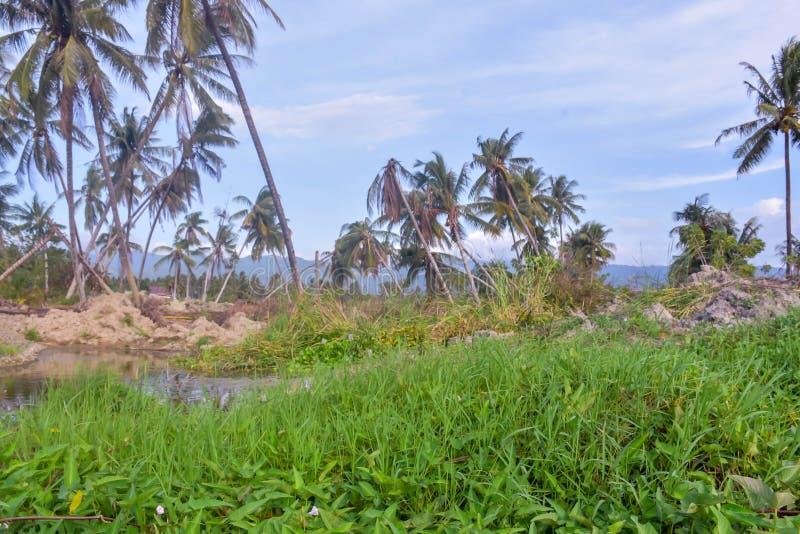 多数严重损伤地震液化Petobo苏拉威西岛中部 库存图片