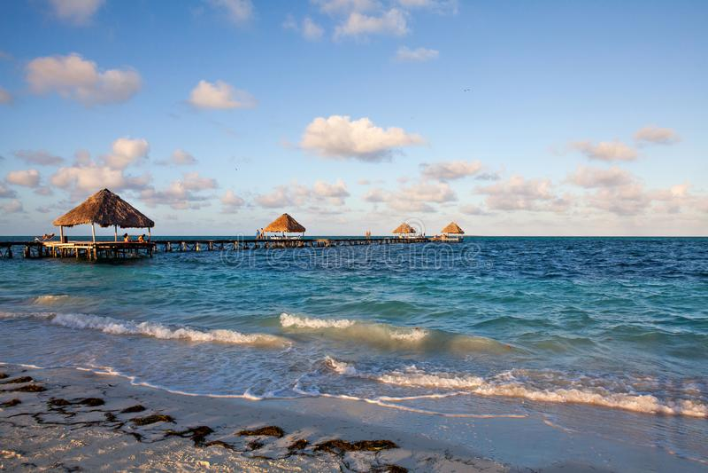 多数美丽的海滩古巴, Jardines del Rey 库存图片