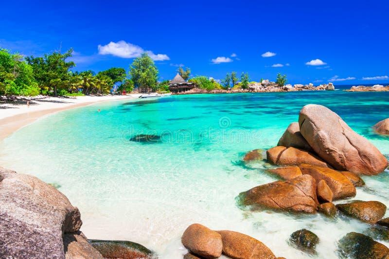 多数美丽的热带海滩-塞舌尔群岛,普拉兰岛海岛 免版税库存图片