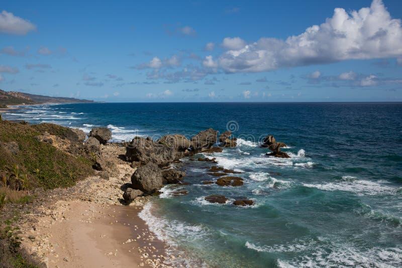巴巴多斯的岩石海岸 免版税库存图片