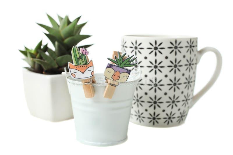 多汁植物、杯子和花桶 库存图片