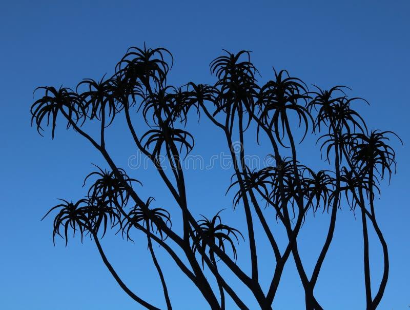 多汁植物剪影反对深蓝天空-图象的 库存图片