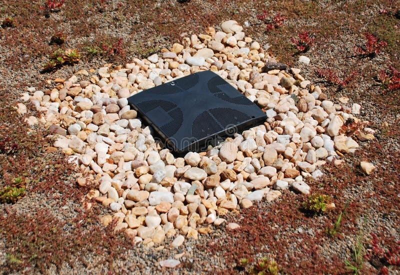 多汁植物小卵石和流失在一个绿色屋顶 库存图片