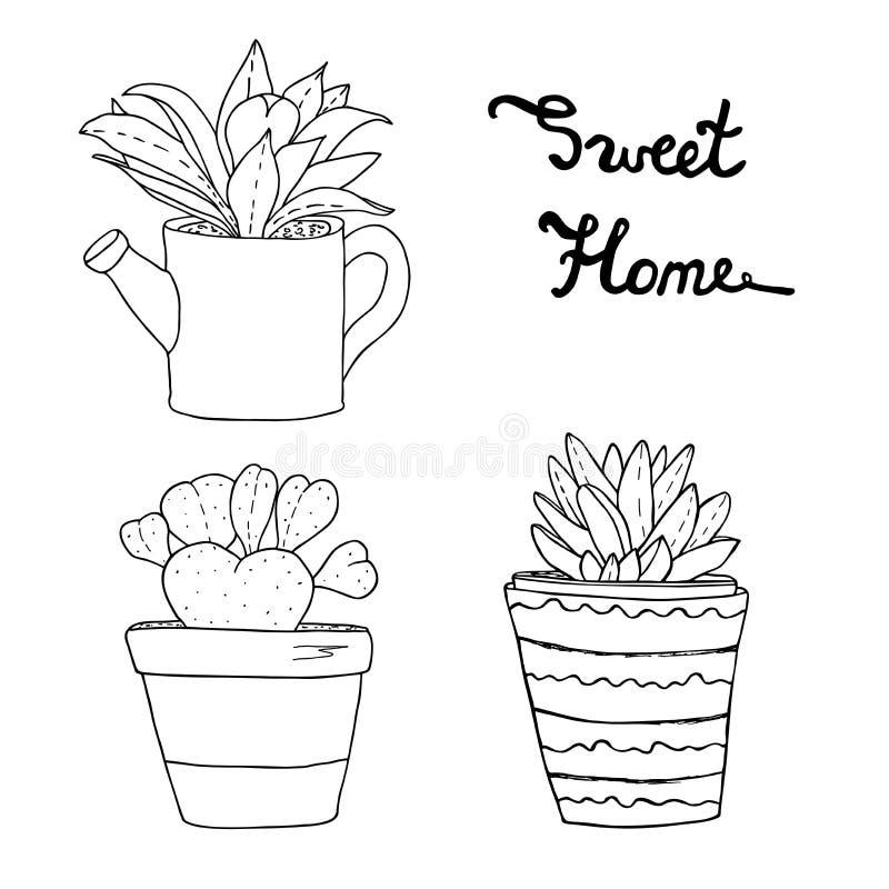 多汁植物,仙人掌,花盆的植物 皇族释放例证