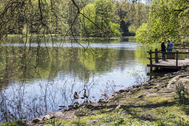 多特蒙德,德国鲁尔区,北部莱茵河西华里亚,德国- 2018年4月16日:龙贝格公园是欧洲加尔省的一部分 免版税库存图片