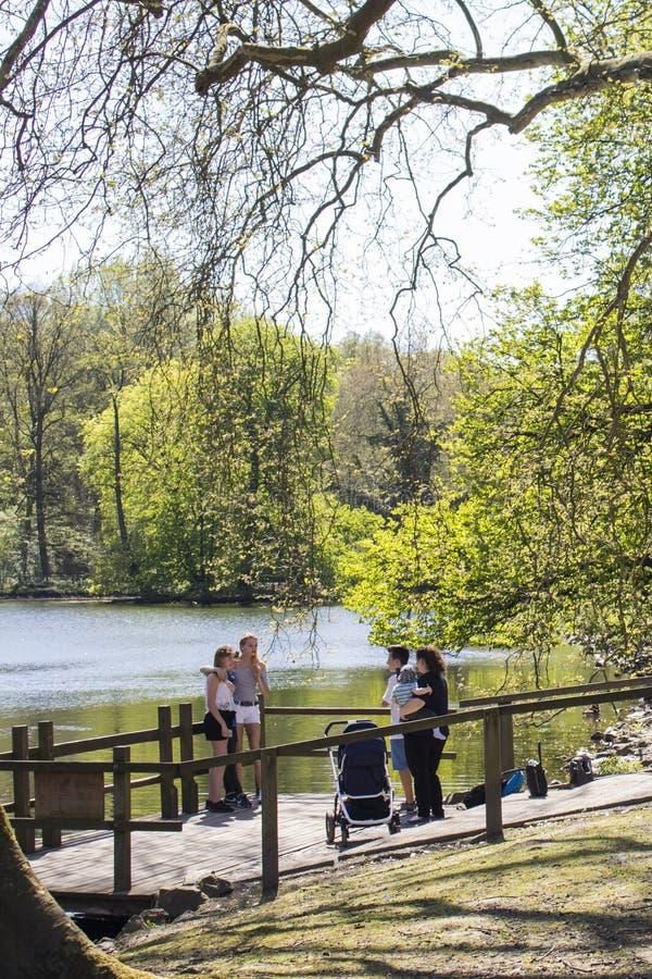 多特蒙德,德国鲁尔区,北部莱茵河西华里亚,德国- 2018年4月16日:龙贝格公园是欧洲庭院网络的一部分 免版税库存照片